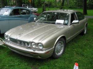 jaguarvandenplas00f