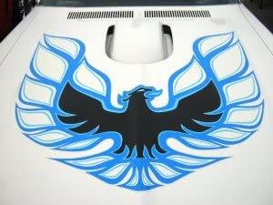 Pontiac Firebird 74 n1 d3