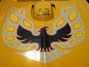 Pontiac Firebird 76 n1 d3