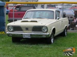barracuda 66