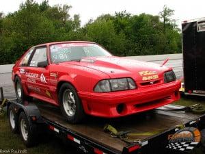 Mustang 8