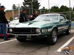 shelby GT 350
