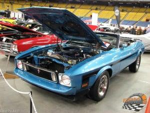 Mustang 73