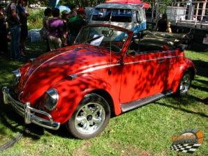 Volkswagen Beetle 22