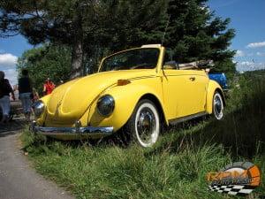Volkswagen Beetle 24