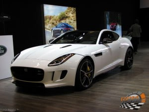 Jaguar (8)