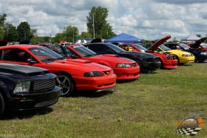 Super Ford Show 2015  (39)